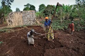 Burundi | Genocide Katrice White | Scoop.it