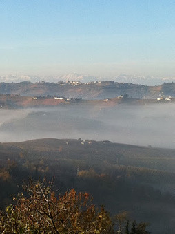 Le blog de Nicolas de Rouyn: L'Italie du vin, de plus en plus   Vendredis du Vin   Scoop.it