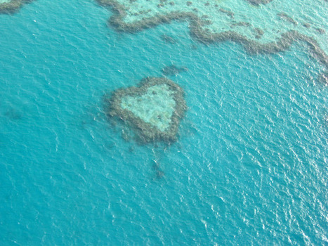 Australia: Great Barrier Reef | Wicked! | Scoop.it