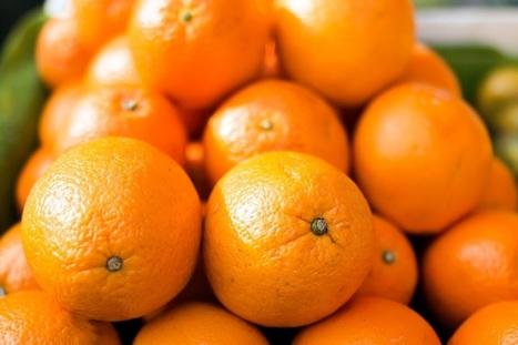 FreshFruitPortal.com | Spanish fruit exports plummet in the U.S. | Fruits & légumes à l'international | Scoop.it