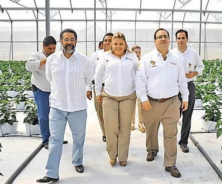 Inauguran en Veracruz campo experimental de agricultura | Investigacion Experimental | Scoop.it