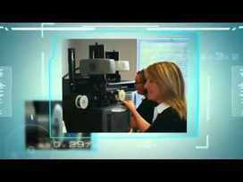 Document imaging solutions | Storetec Services Limited | Scoop.it