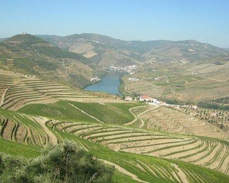 CCDR-N assume missão de proteger Douro Património Mundial - Porto Canal | Arqueologia | Blogue Visualidades | Scoop.it