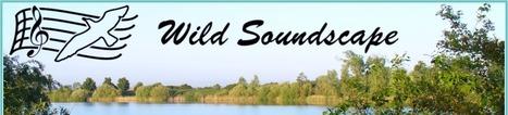 Wild Soundscape : Theory   DESARTSONNANTS - CRÉATION SONORE ET ENVIRONNEMENT - ENVIRONMENTAL SOUND ART - PAYSAGES ET ECOLOGIE SONORE   Scoop.it