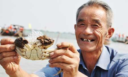 Crab farmers shelling out to protect product(3654) -Go to China | Consumer Packaged Goods Supply Chain Market Leaders | Scoop.it