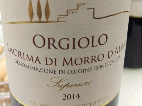 Lacrima di Morro d'Alba among several Italian red wines that people should make an effort to seek out | Wines and People | Scoop.it