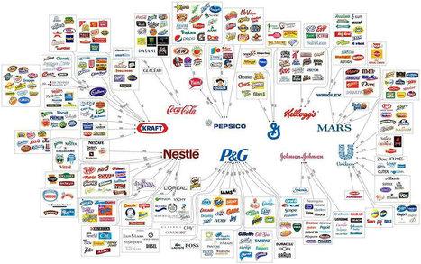 Saviez vous que 75% des produits mondialement consommés sont possédés par seulement 10 entreprises ? (Illustration)   Graphic Design   Scoop.it
