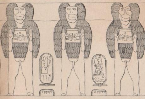 Anniversaire de l'érection de l'obélisque de la place de la Concorde : complainte pour les babouins abandonnés | Égypt-actus | Scoop.it