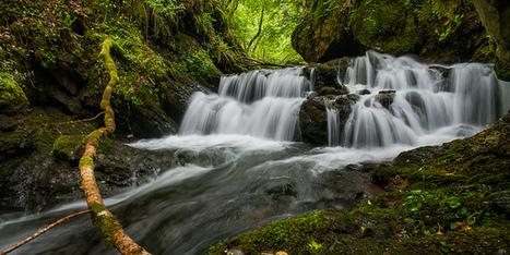 Débit de printemps dans le ruisseau d'Ardengost  | Hervé Delesalle - Flickr | Vallée d'Aure - Pyrénées | Scoop.it