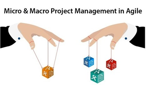 Micro & Macro Project Management in Agile Framework - Yodiz Blog | Agile For Startups | Scoop.it