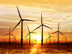 """The IEA dares not lose faith in a """"clean energy future"""" 