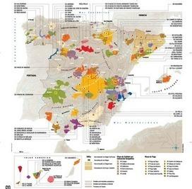 Actualización del Mapa de Vinos de las Denominaciones de Origen ...   Comercio Internacional   Scoop.it