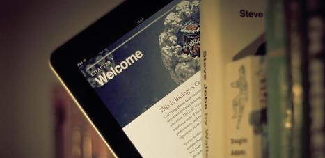 Les ebooks à 4,99 $ sont plus lucratifs que ceux à 9,99 ou 14,99 $ | News médiathèques | Scoop.it