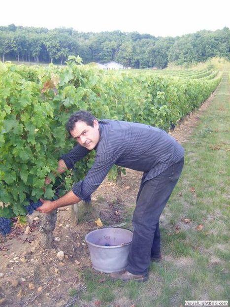 Vins de Loire - Domaine de Beauséjour | BEAUSEJOUR by BEAUSEJOUR | Scoop.it