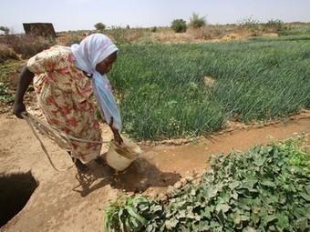 Women Must Be Heard in the Climate Change Debate   développement durable : quel avenir voulons-nous ?   Scoop.it