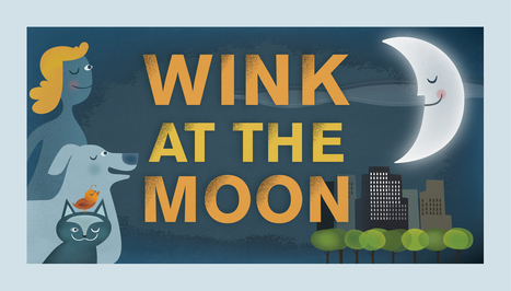 Wink for Neil – InOMN 2012 | NASA Lunar Science Institute | Planets, Stars, rockets and Space | Scoop.it