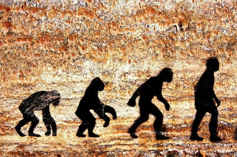 Could Evolution Ever Yield a 'Perfect' Organism? - D-brief | Knowmads, Infocology of the future | Scoop.it