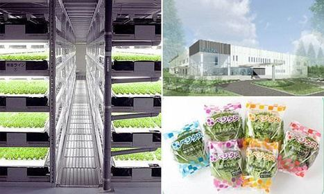 World's first robot-run farm will open in 2017 | Scinnovation | Scoop.it