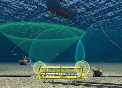 Ultrasound Ocean Noises Pose Risk to Marine Life - NatGeo News Watch (blog) | Marine life | Scoop.it