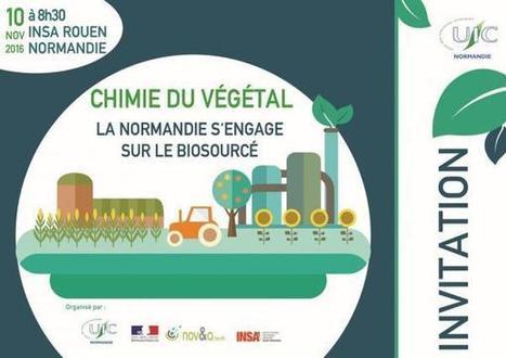 (Ndie) Chimie du végétal : rendez-vous le 10 novembre 2016 - UIC Normandie | Normandie UIC | PSN - Filière Eco-Industrie | Scoop.it