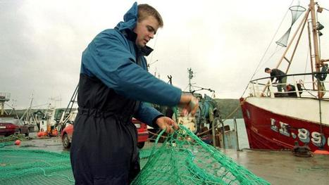#Cork firm #ships 80 tonnes of #seafood to #China in search on new export contracts #OverFishing | Rescue our Ocean's & it's species from Man's Pollution! | Scoop.it