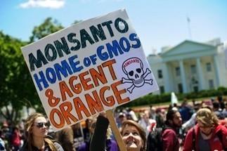 Etats-Unis : des super-OGM pour doper les ventes des herbicides | Questions de développement ... | Scoop.it