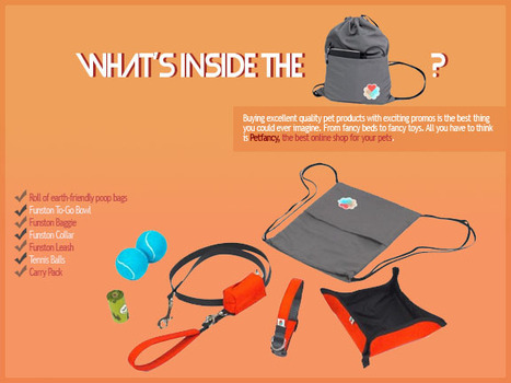 Check Out What Is Inside The Dog Starter Kit | All About Pet Accesories | Scoop.it