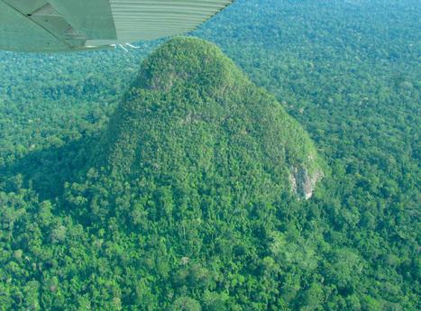 Peru creates 'YELLOWSTONE of the AMAZON': 3.3M acre reserve home to uncontacted tribes, endangered wildlife | Le BONHEUR comme indice d'épanouissement social et économique. | Scoop.it