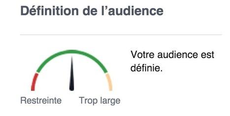 Affiner son ciblage Facebook Ads avec Audience Insights   Veille : Référencement Payant SEA   Scoop.it