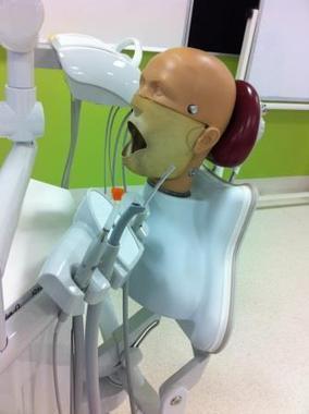 What is dentistry program accreditation? OzTREKK – Study in Australia   Australian Dental Schools   Scoop.it
