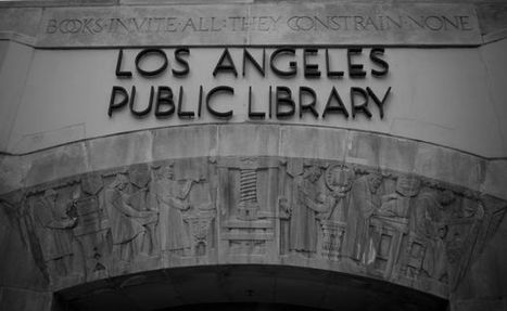 How Libraries Have Embraced Their Role in the Public Safety Net   Information Science   Scoop.it