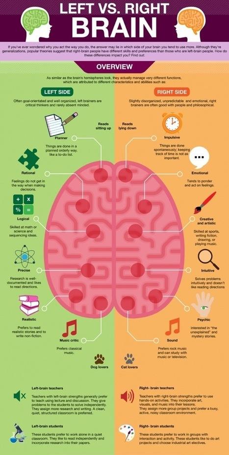 Coeduweg: Hemisferio derecho e izquierdo | Couching para adolescentes | Scoop.it