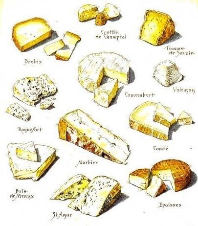 « Comment voulez-vous gouverner un pays où il existe plus de 300 sortes de fromage ? » (citation attribuée à Charles de Gaulle) | le français à table | Scoop.it
