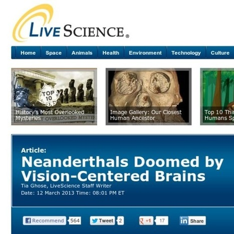 Neanderthals Doomed by Vision-Centered Brains | Anthropology and Archaeology | Scoop.it
