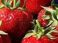 Egyptian strawberries meet international standards - Fresh Plaza | Fruits & légumes à l'international | Scoop.it
