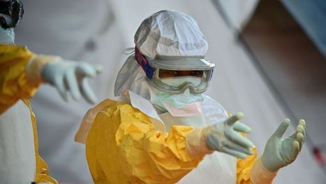 Les quatre idées fausses sur Ebola   Santé   Scoop.it