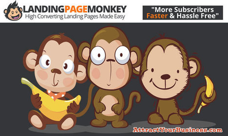 Do you use landing pages? | Attract Your Business | Scoop.it