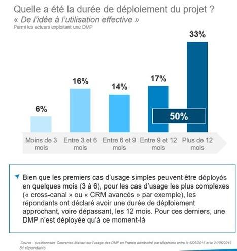 Usages et perceptions des DMP par Converteo et Makazi | DATA DRIVEN MARKETING | Scoop.it