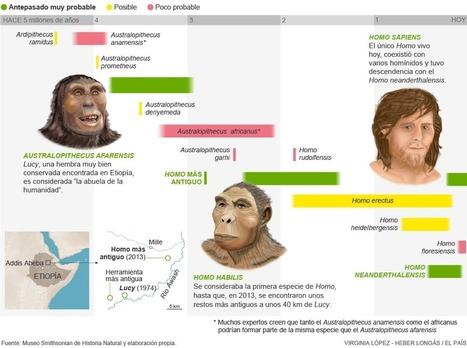 Los ancestros de los humanos | EL PAÍS Semanal | EL PAÍS | Biología de Cosas de Ciencias | Scoop.it