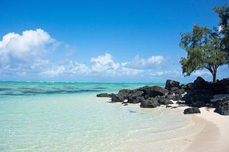 Beach - paradise in mauritus | Tourisme | Scoop.it