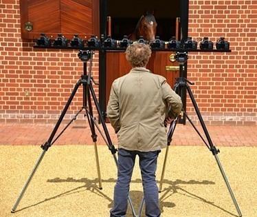 Chris Levine to unveil unique Frankel portrait | Horse Racing News | Scoop.it