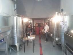Microcosmos: un chai urbain à Marseille, Peuchère ! | Wine and the city | Gastronomy & Wines | Scoop.it