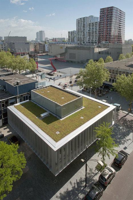 Dreamhouse: cubiertas verdes para un edificio rehabilitado | Jardines Verticales y azoteas verdes. | Scoop.it