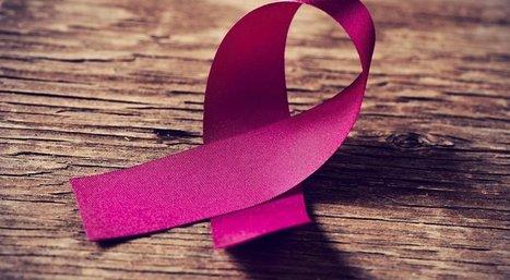 Appel à candidatures : Création d'une chaire de Recherche en Sciences Humaines et Sociales appliquées au cancer | Recherche  & Enseignement Supérieur | Scoop.it