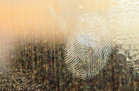 Brainwaves – A New Type of Fingerprint? | Iris Scans and Biometrics | Scoop.it