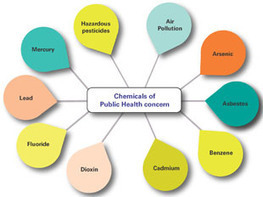 World Health Organization (WHO): Ten chemicals of major public health concern | Asbestos and Mesothelioma World News | Scoop.it