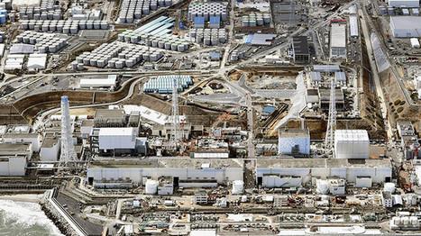 Un muro gigante subterráneo de hielo contendrá la fuga de agua radiactiva bajo Fukushima - RT | Biología de Cosas de Ciencias | Scoop.it