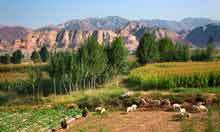 China to flatten 700 mountains for new metropolis in the desert | Geography in the News @BIS | Scoop.it
