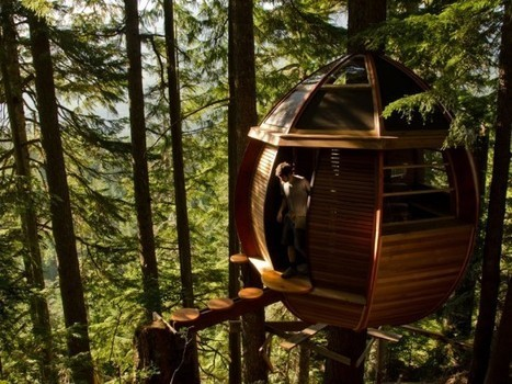 Poor Carpenter Builds Awesome Tree House with Materials Found on Craiglist | Strange days indeed... | Scoop.it