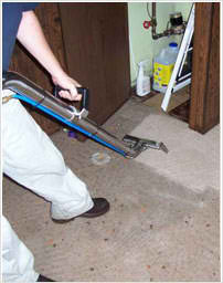 The New best services in Water Flood in a low cost | The Best Water Flood Services | Scoop.it